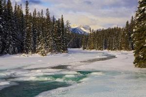 温哥华-【典·深度】加拿大西部9天*冬日暖阳*落基山国家公园<卡尔加里,温哥华>