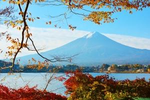 日本-【跟团游】日本6天*金阁寺、富士山河口湖枫叶祭、和风全鱼宴*深圳往返