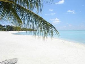 马尔代夫-马尔代夫哈库拉岛6天*一价全包*水上飞机往返接送*直飞*北京往返