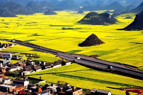【尚·深度】广西、百色、贵州、兴义、云南、罗平4天*高铁三省联游
