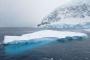【尚·猎奇】南极、阿根廷15天*南极半岛深度*华人包船*香港往返<海钻石号,夸克探险队>