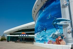 北京-【当地玩乐】北京海洋馆+动物园+熊猫馆自助纯玩一日游