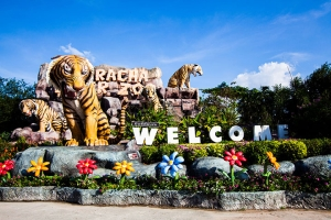 泰国-【当地玩乐】泰国东芭提雅是拉差龙虎园(门票+表演+自助午餐)+富贵黄金屋 一日游*等待确认