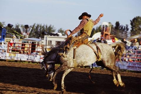卡尔加里 加拿大-【尚·深度】加拿大西岸13天*牛仔节庆典狂野之旅<卡尔加里>