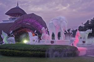 泰国-泰国【当地玩乐】代订清迈美旺大象营+宁曼路+夜间动物园一日游*等待确认