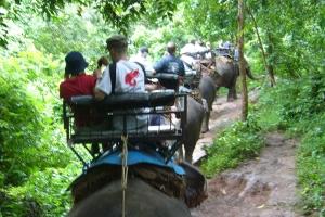 泰国-泰国【当地玩乐】代订甲米卡洛斯山划皮划艇+骑大象1小时一日游*等待确认