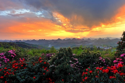贵州、毕节、包列3-5天*百里杜鹃花海*黄果树*水八碗特色宴