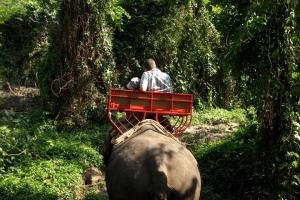 泰国-泰国【当地玩乐】代订甲米塔兰划皮划艇+骑大象1小时一日游*等待确认