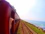 【半自由行】斯里兰卡全景之旅8天*包罗万象*北京往返*等待确认