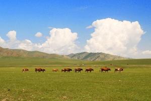 内蒙-【尚·全景】蒙古国、内蒙古、呼伦贝尔、乔巴山、满洲里、双飞6天*蒙古国国家草原公园*根河湿地*呼伦湖<内外蒙联游,越野车穿越>