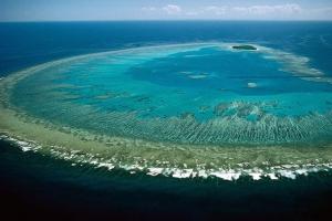 大堡礁-【当地玩乐】澳洲凯恩斯大堡礁三日游