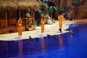 北京-【当地玩乐】【炫动海洋之旅】北京海洋馆+北京动物园+北京天文馆纯玩一日