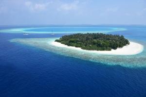 马尔代夫-【精品小团】斯里兰卡、马尔代夫8天*轻奢*欢畅之旅*等待确认<一岛一酒店,狮子岩,大象孤儿院>