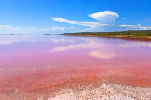 <澳洲西部(珀斯)8天>探索粉红湖-尖峰石阵-珀斯两天自由活动