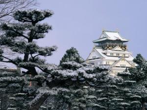 本州-【跟团团】日本本州6天*超值乐享*北京往返*等待确认